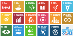 SDG, Sustainable Development Goals CSE | CSR, Sustainability, Sustainability Academy