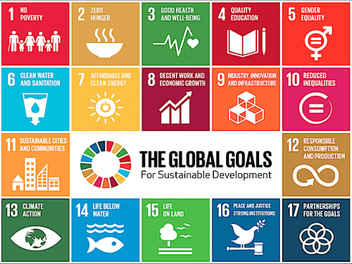 Political Leaders, SDGs, Sustainable Development Goals, Economic Growth, Environmental Sustainability, Social Sustainability, Trade, Innovation, Sustainable Business, Greenhouse Gas Emissions, CSE, Sustainability, Sustainability Academy|