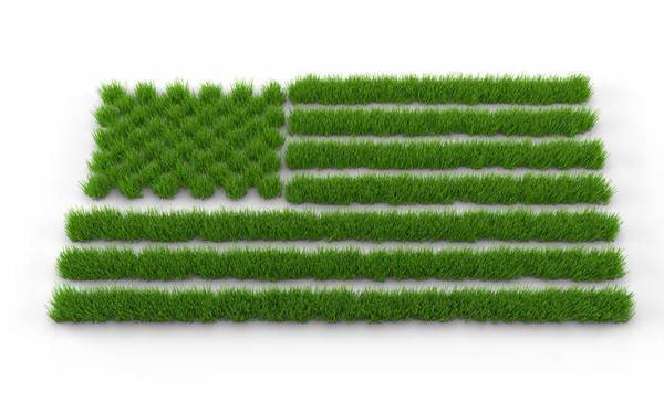 Corporate Responsibility, CSR, Sustainability, Sustainable Future, Environment, Climate Change, 4th of July, Independence Day, USA, CSE, Sustainability Academy|